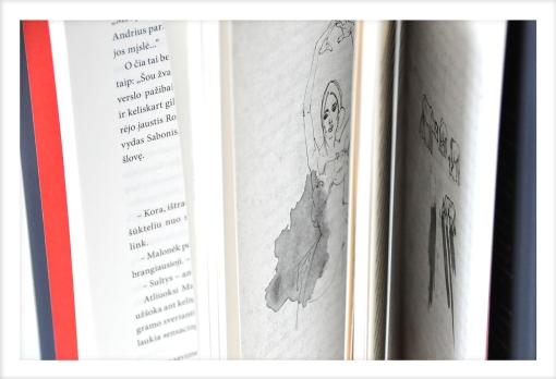 knyga-Domertas-Ignas-Staskevicius-dailininke-Milena-Liutkute-Grigaitiene-6